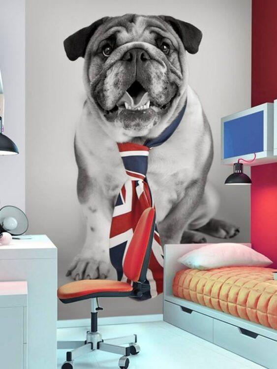 Fotomurale Bulldog Union Jack 232 x 158cm