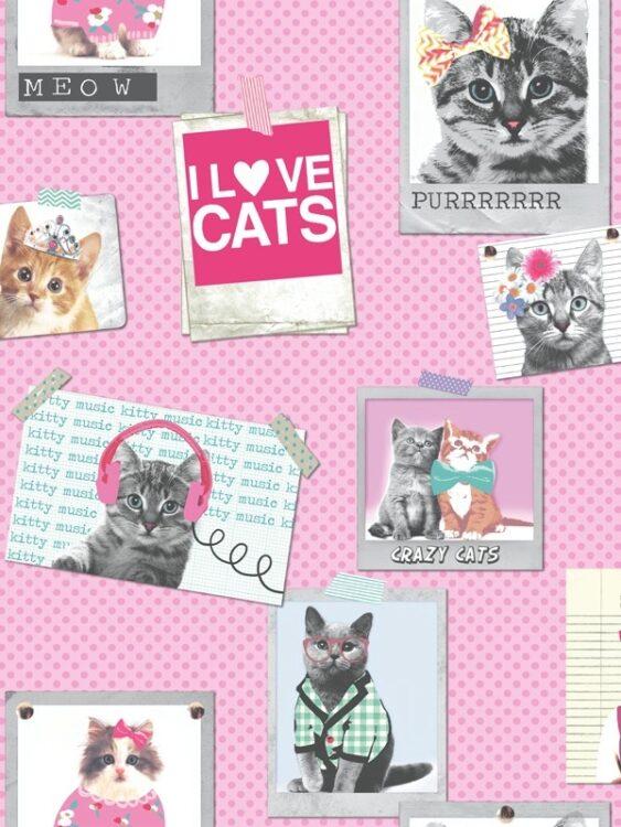 "Carta da parati ""Crazy Cats"""