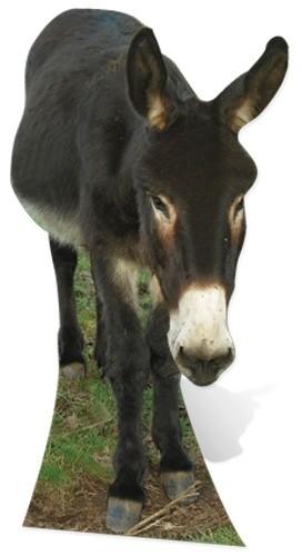 Donkey sagoma 122 cm H