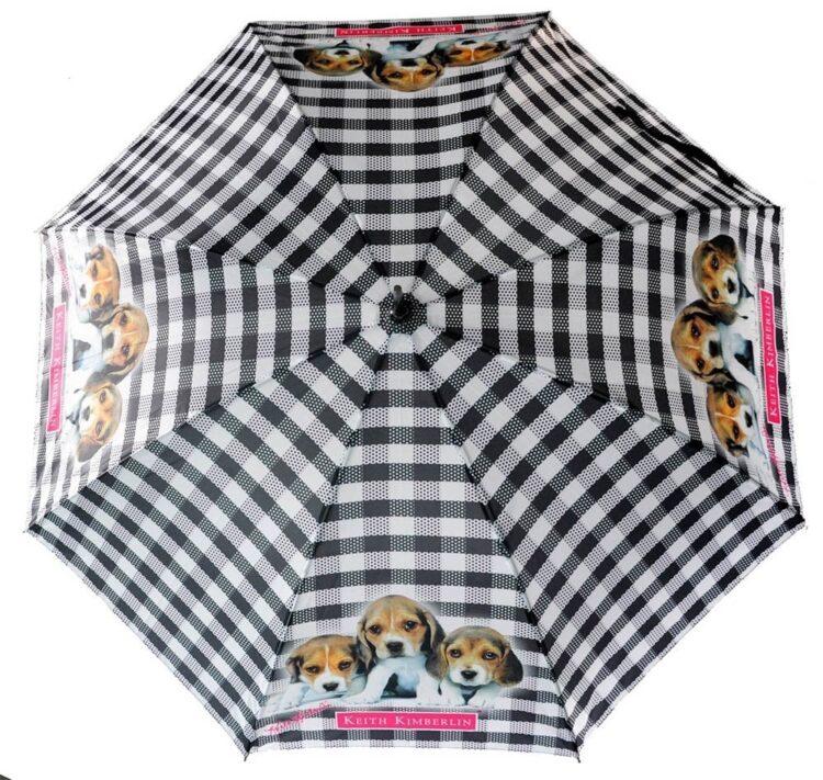 Ombrello automatico cuccioli di Keith Kimberlin