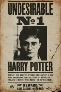 """Harry Potter 7 Maxi Poster """"Wanted"""""""