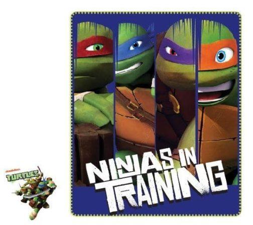 Plaid pile Ninja Turtles Ninjas in Training