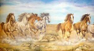 Bordo Cavalli Selvaggi 5mt