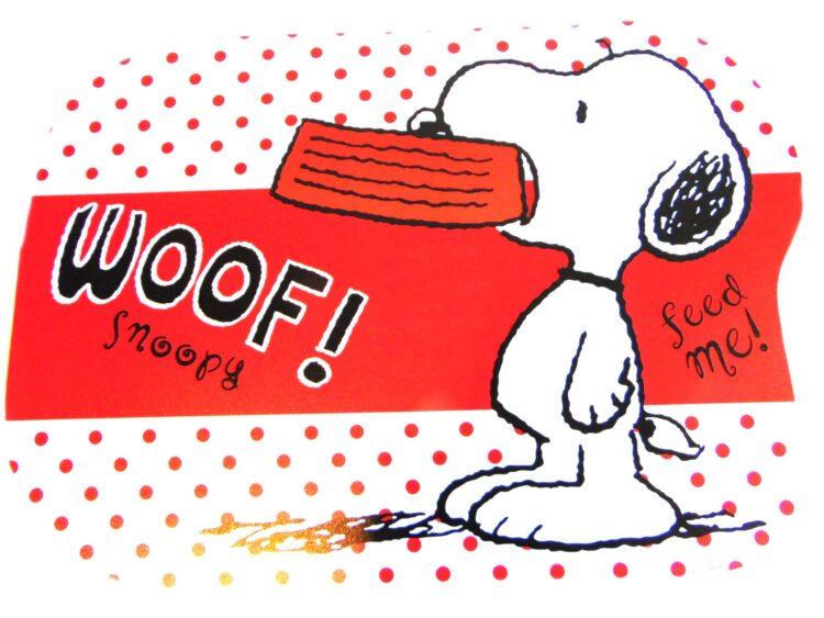 Tovaglietta in plastica Snoopy