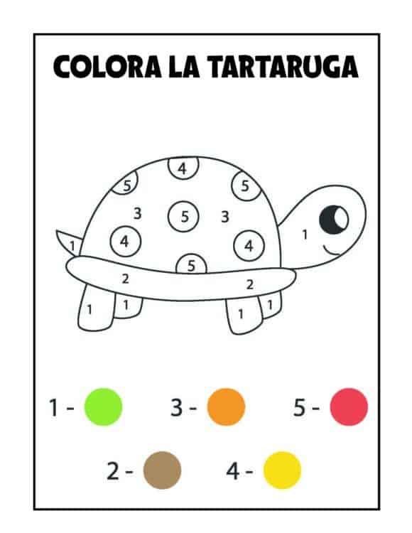 Album colora per numeri tartaruga